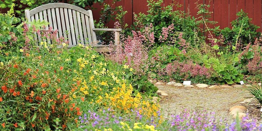 Creating Year Round Interest in a California Native Garden